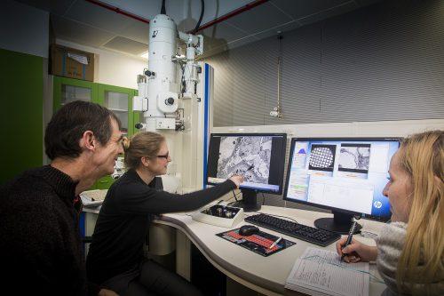 Microscope image analysis